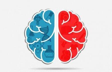 O que é Mindset? Descubra o Conceito e como isso pode te Ajudar