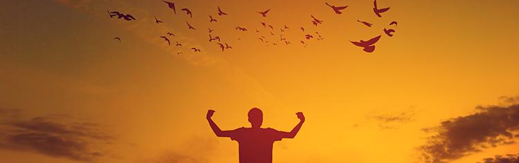 O que é adaptabilidade e como aplica-la em nossa vida?
