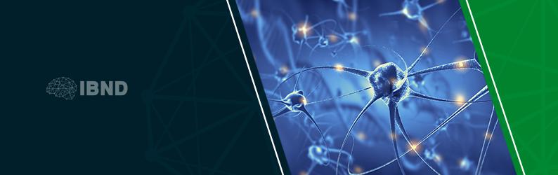 Neurotransmissores: a ciência por trás dos estados emocionais