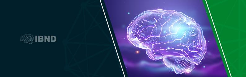 A teoria do cérebro trino: o cérebro sob uma nova perspectiva.