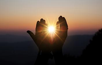 O que é e qual é a importância da resiliência em nossa vida?