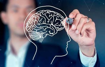 O que é Neurocoaching?